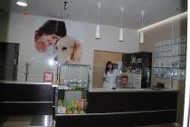 Клиника Птицыных